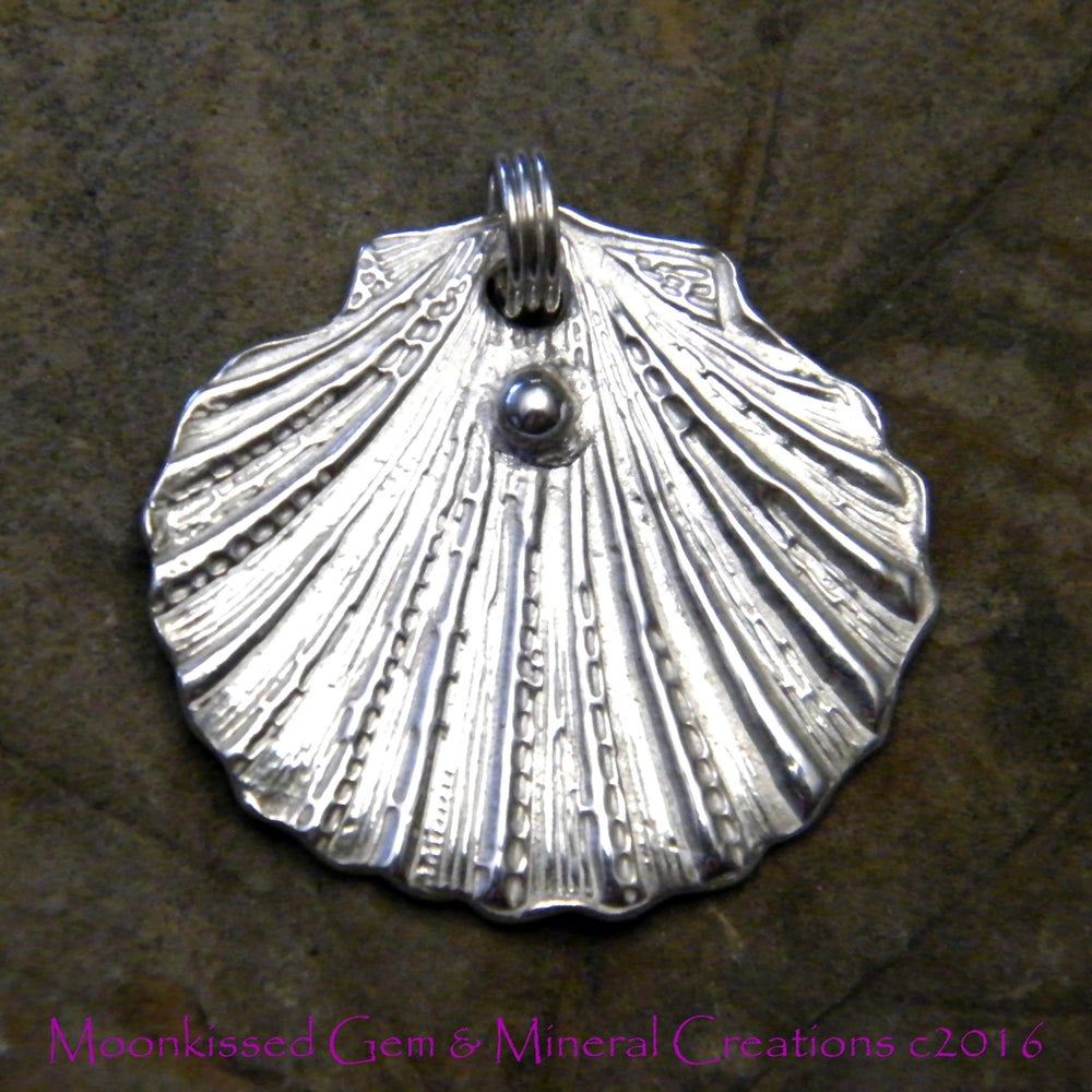 Image of Fine Silver Cockle Shell