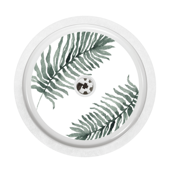 Image of Fern
