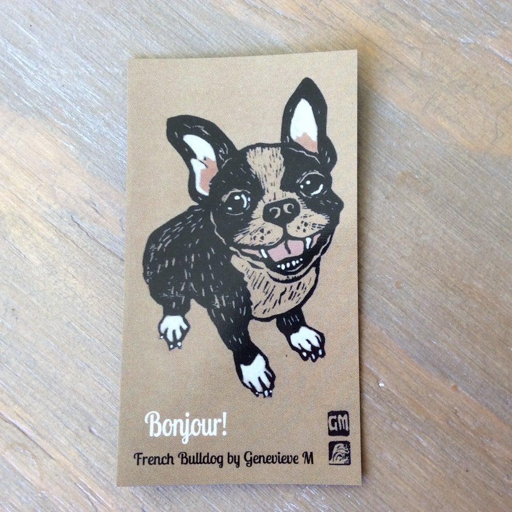 Image of French Bulldog