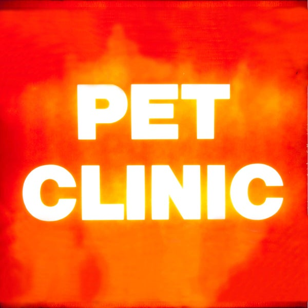 Image of Pet Clinic - The Dust That Made The Fire That Made The Light LP Vinyl
