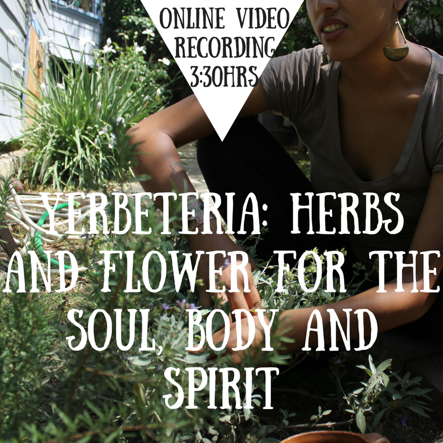Image of Yerbeteria: Herbs and Flower for the Soul, Body and Spirit