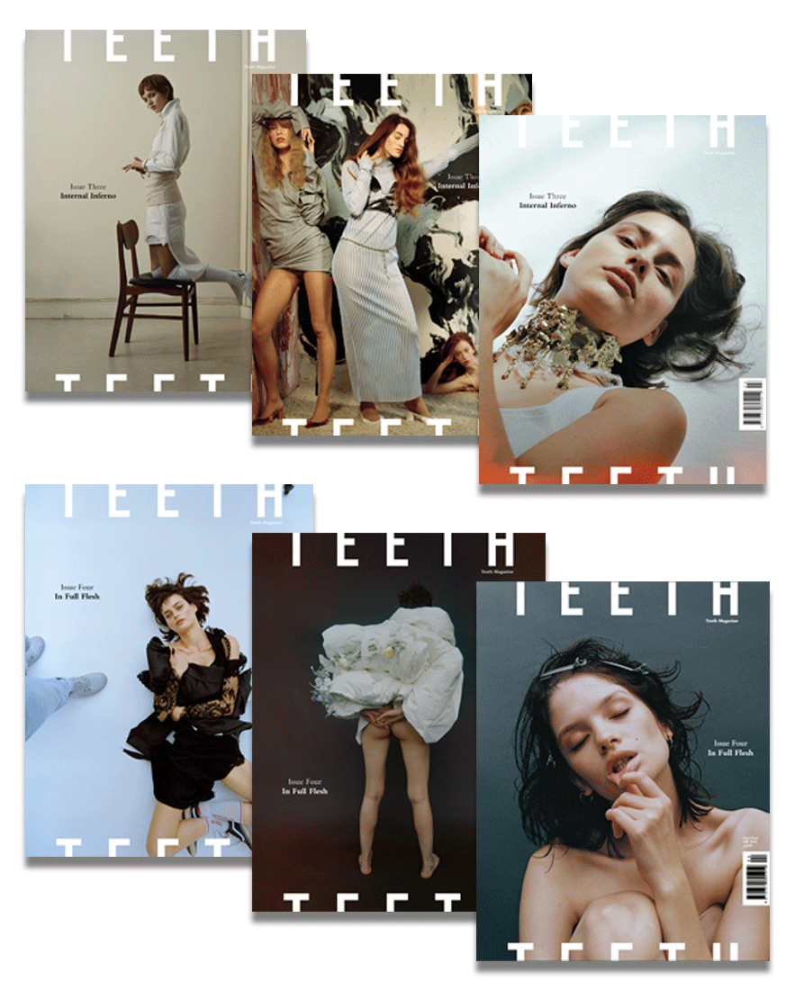 Image of 2016 Teeth Magazine Subscription Package (2 Issues)
