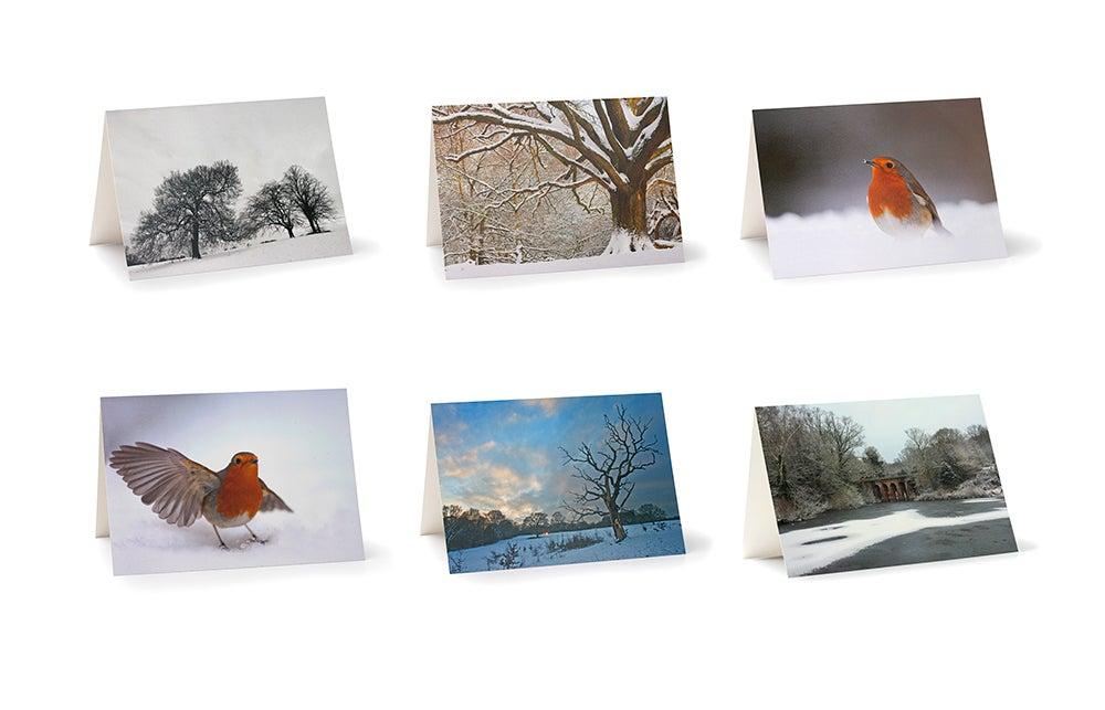 Image of Hampstead Heath - Christmas Cards