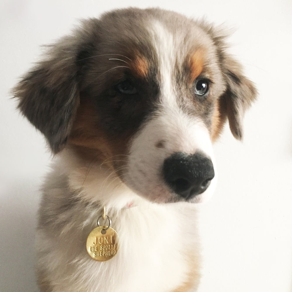 Image of CUSTOM HAND HAMMERED PET ID TAG