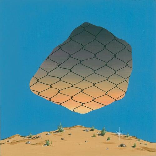 Image of Carl Sagan's Skate Shoes LP & Shirt Bundle