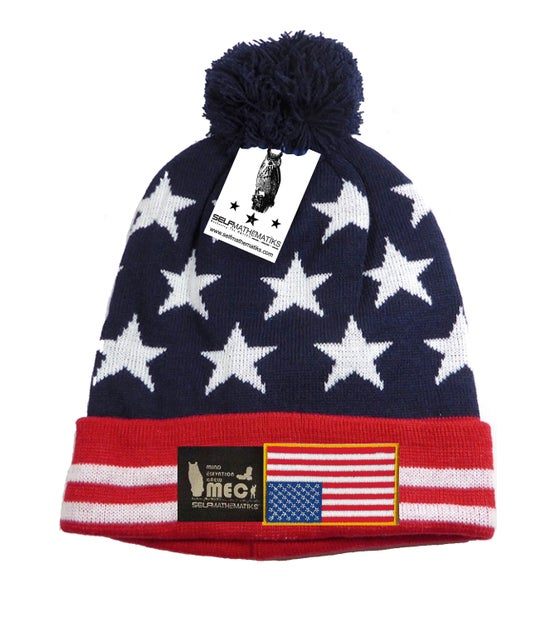 """Image of """"IN DISTRESS""""  """"THINKIN' CAP"""" POM SKULLY/BEANIE: 2016 PRESIDENTIAL ELECTION SPECIAL EDITION"""