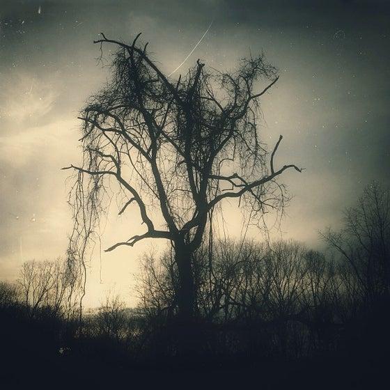 Image of Sorrow - photograph