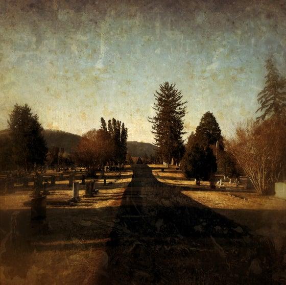 Image of Dark Path - photograph
