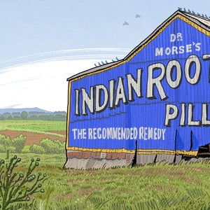 Image of Root Pills Shed, East Maitland, digital print