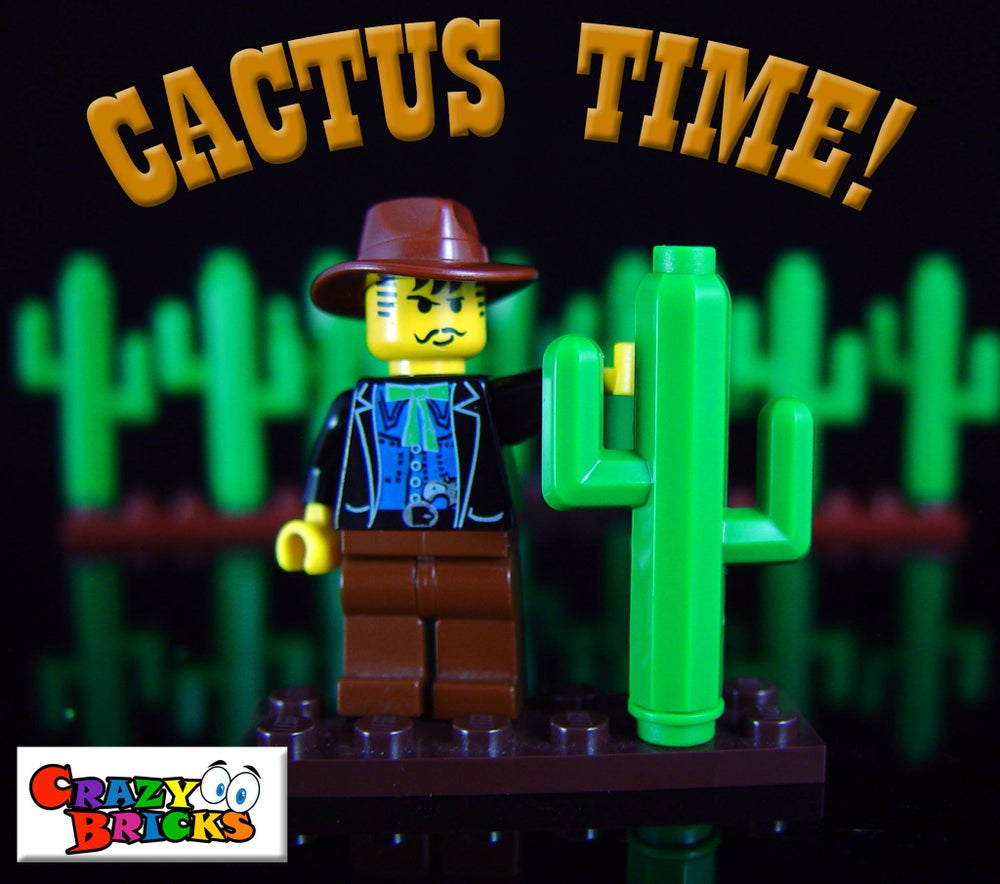 Image of A batch of 10 Cactus 50% OFF!