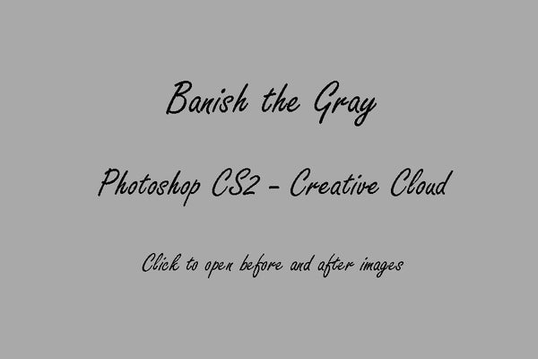 Image of PS CS2-CC : Banish the Gray © Son Kissed Photography