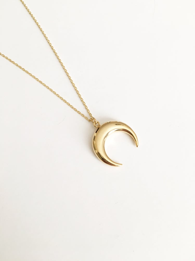 Image of Large horn necklace