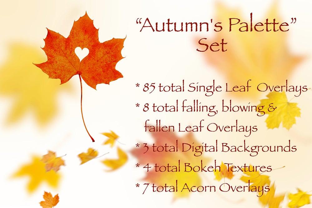 Image of Autumn's Palette Set