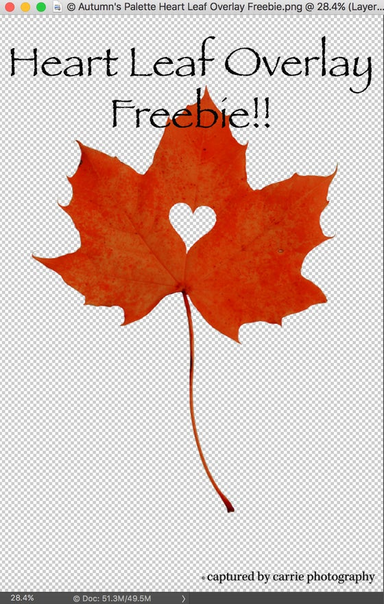 Image of Heart Leaf Overlay Freebie
