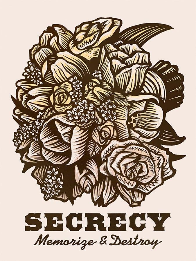Image of Secrecy