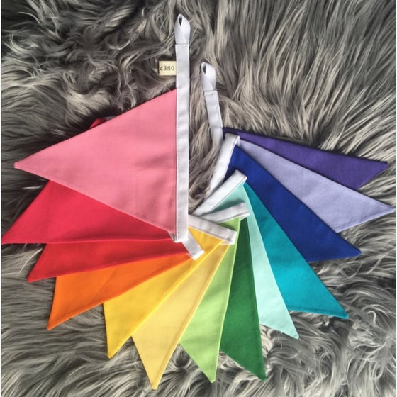 Image of Rainbow Bunting
