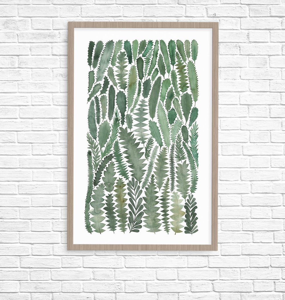 Image of Banksia Leaves Giclee Fine Art Print
