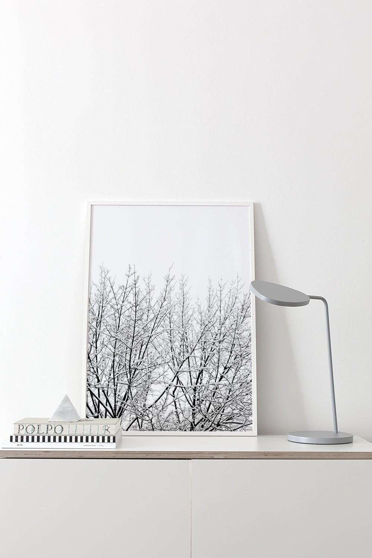 Image of Snowy Tree