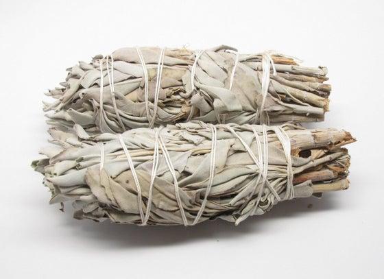 Image of White Sage