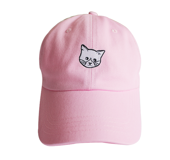 Image of FLUX CAT Hat - Pink