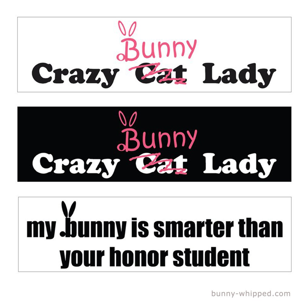 Image of Bumper Sticker - 3 Designs to choose from