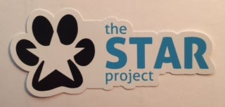 Image of The STAR Project Car Decal