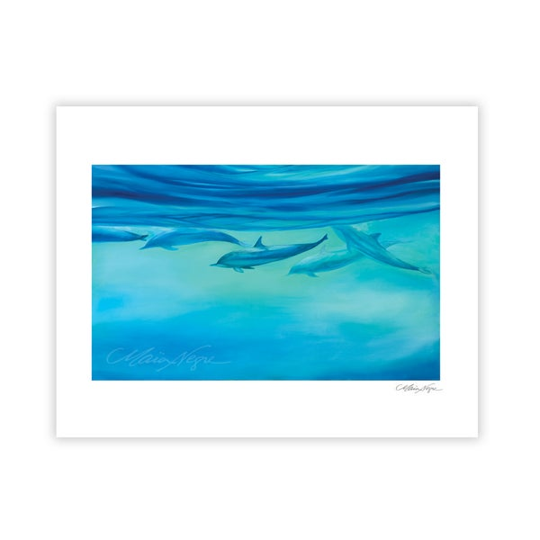 Image of Dolphins, Archival Paper Print