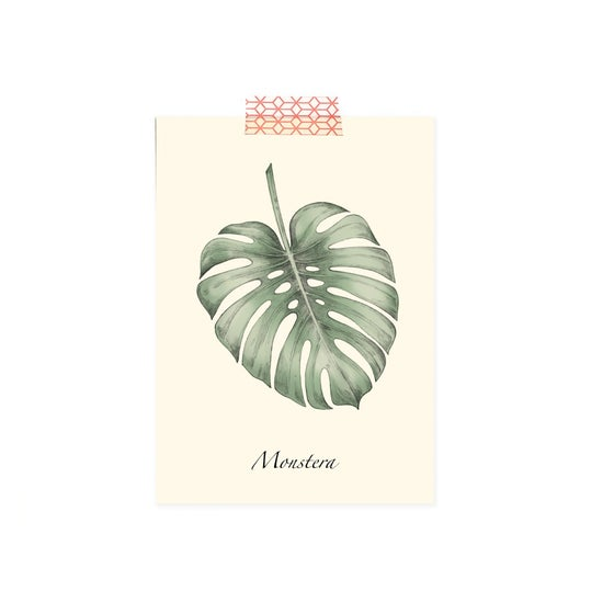 Image of Carte postale simple Monstera