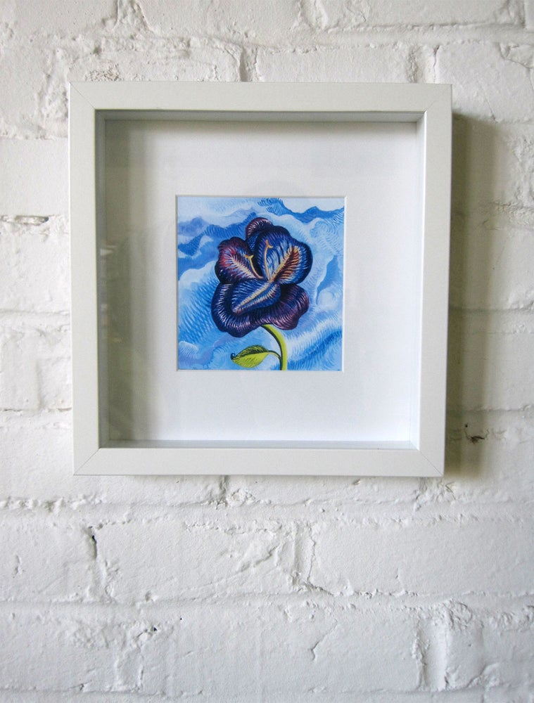 Image of Violet (Framed)