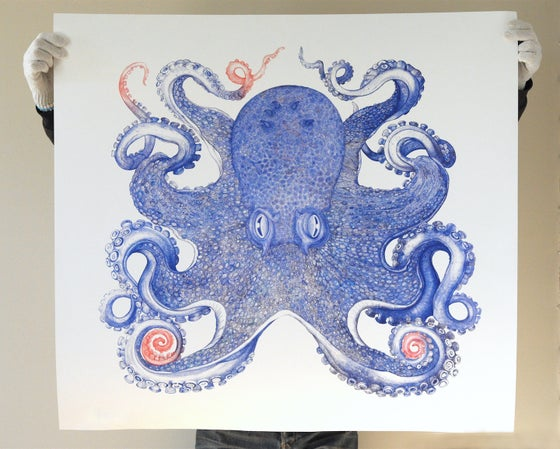 Image of Blue Octopus 36 x 40 inches Limited Edition of 25