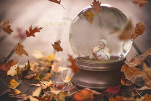 Image of 'Autumn is Here' 2016 The Sleeping Willow Snowglobe Template
