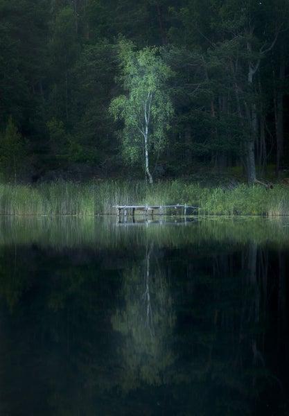 Image of Stillhet vid Ulvsjön