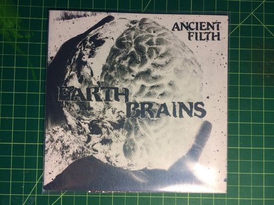 Image of Earth Brains Flexi