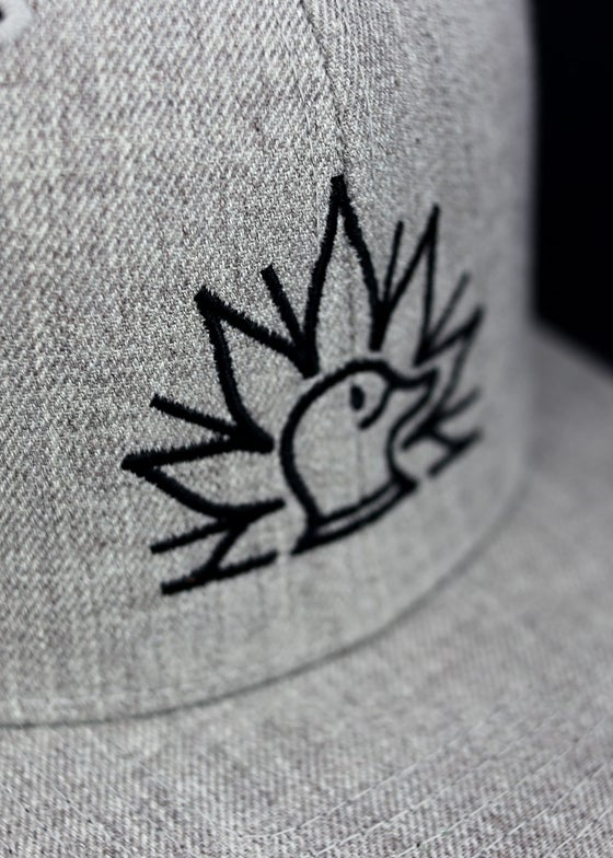 Image of Greenhead Snapback Hat in Grey