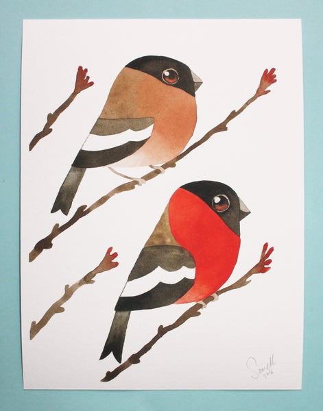 Image of Mr & Mrs Bullfinch