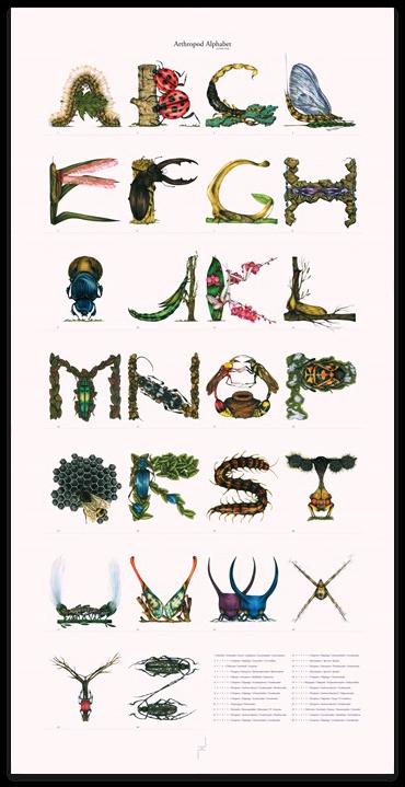 Image of Arthropod Alphabet Print