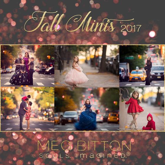 Image of 2017 Fall Mini Sessions