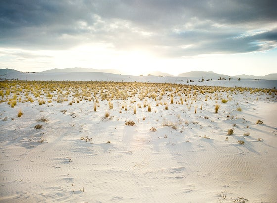Image of white sands new mexico landscape