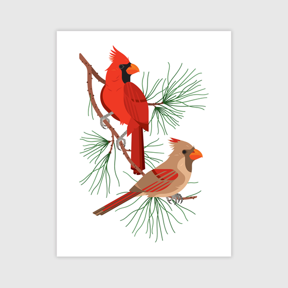 Image of Northern Cardinal Print