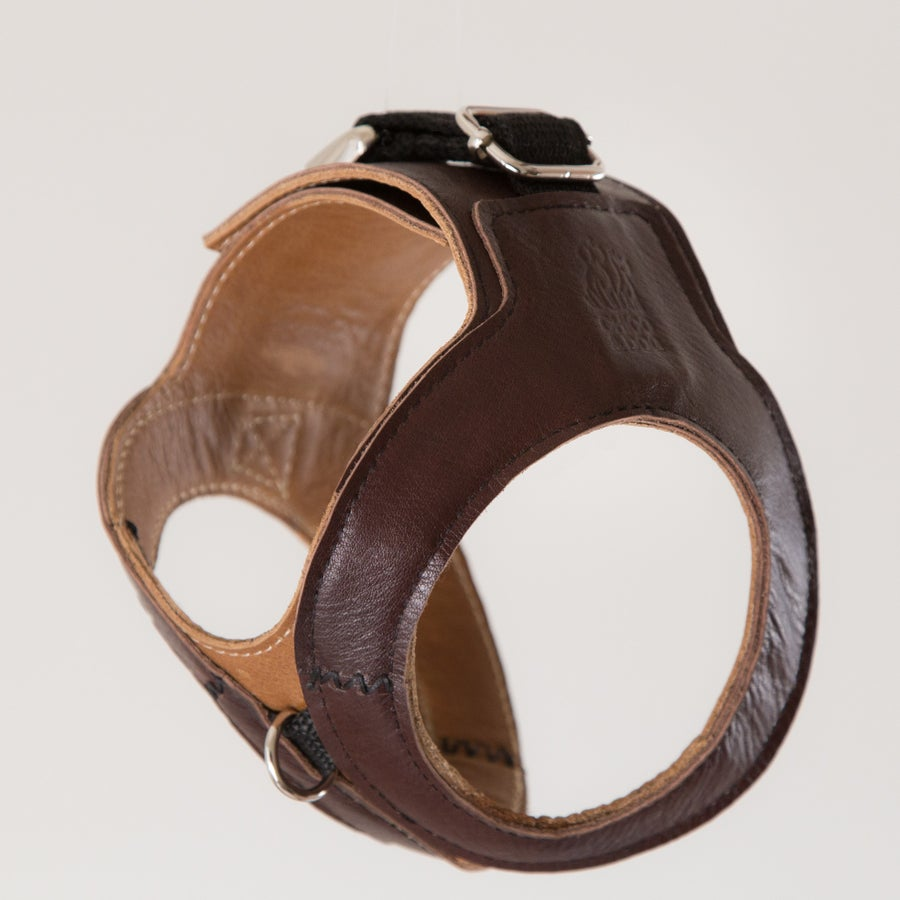 Image of Hemmingway Harness - Chocolate on Tan