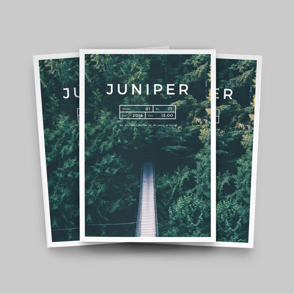 Image of J U N I P E R  Magazine / Portfolio