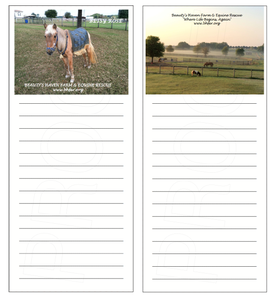 Image of Mixed Set of Magnetic Note Pads (Betsy Rose/Morning At The Rescue)