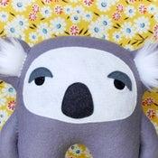 Image of Kevin the Koala
