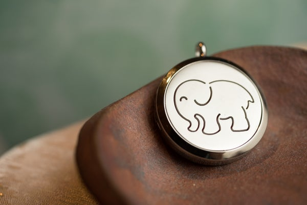Image of Animal Essential Oil Diffuser Necklace