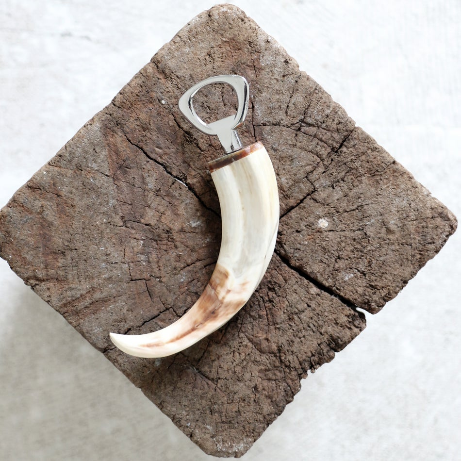 Image of Warthog Tusk Bottle Opener