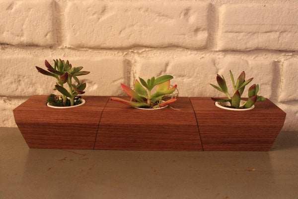 Image of Succulent Box Puzzle