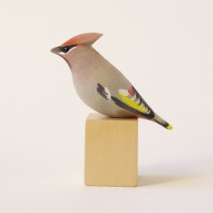 Image of Waxwing
