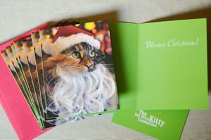 Image of IBKC Christmas Cards Featuring Wylla Stout! (set of 10 cards w/envelopes)