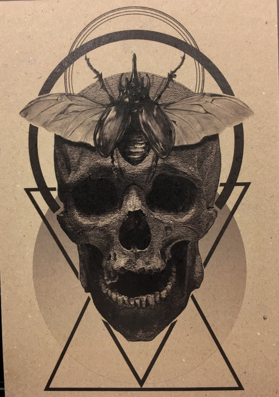 Image of Print - Skull/Bug