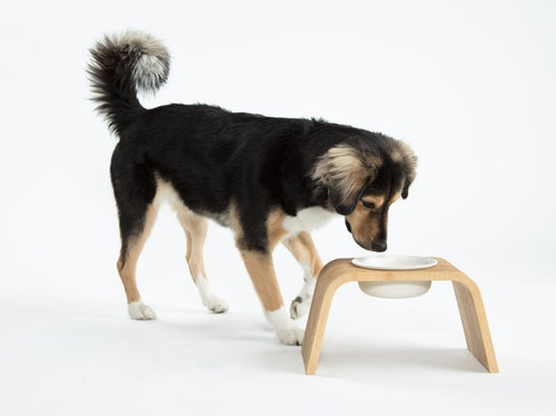 Image of Dog Bowl Stand Set: Single Tall